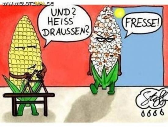 Diese Hitze...!