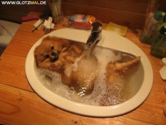 Abendliches Bad