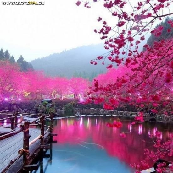 Ohne Bildbearbeitung in Japan